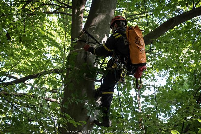 Prohlížíte si fotogarerii k článku Záchrana stromolezce